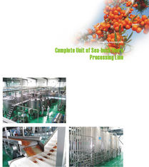 Juice Extractor Machine Fruit Juice Processing Line 20T/D-2000T/D Capacity