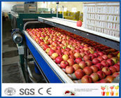 China Fruit Juice Production Fruit And Vegetable Processing Device With SUS304 / SUS316 Steel factory