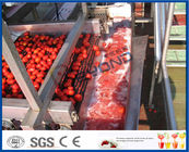 China Full / Semi Automatic Tomato Processing Equipment For Tomato Processing Plant company