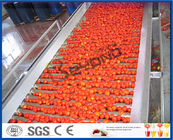 China Tomato Planting Machine Tomato Processing Line Full / Semi Automatic 2 - 50 T/H factory