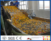 China Energy Saving Orange Processing Line with Glass / PET Bottle Filling Machine factory