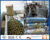 China Pineapple Processing Juice Factory Machinery With Fruit Juice Packaging Machine factory