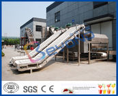 China SUS304 SUS316L Fruit Clapboard Elevator Fruit Processing Equipment For Fruit Conveying factory