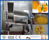 China Stainless Steel Mango Processing Plant With Double Stage Pulper 5T Per Hour factory