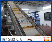 China 2TPH ~ 20TPH SUS304 Mango Processing Line With 2kg Cans Filling Machine company