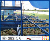 China Fresh Pineapple / Mango Juice Processing Plant With Can Packaging Machine company