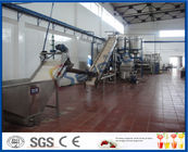 China 5 - 50 T/H Mango Processing Plant With Mango Pulp Machine ISO9001 / CE / SGS factory