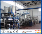 China 50T/H Mango Processing Unit Mango Processing Line With Drum Filling Machine factory