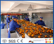 China Fruit Juice Processing Equipment With Citrus / Tangerines / Orange Juice Extractor Machine company