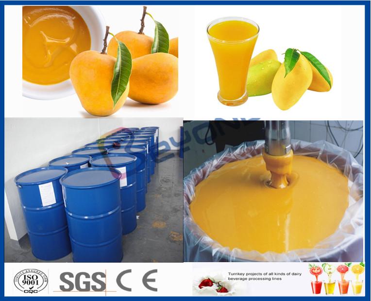 Fruit Processor Machine Mango Processing Line For Juice