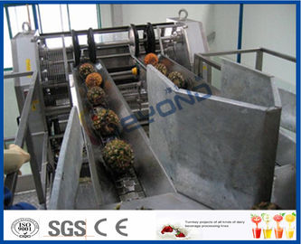 China Fully Automatic PLC Control Pineapple Processing Line For Fruit Juice Processing Machines factory